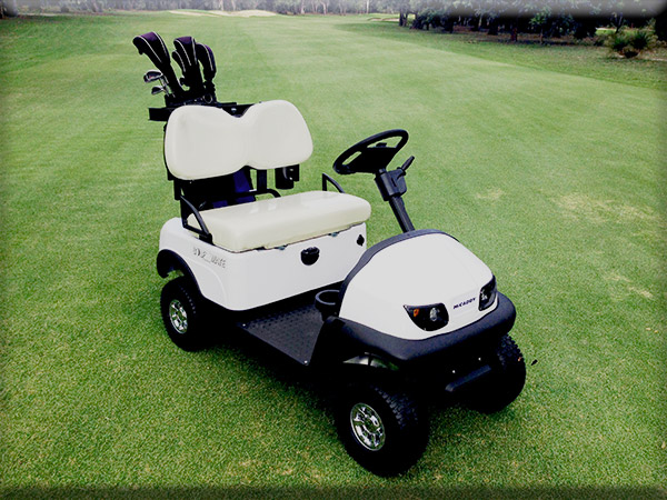 MiCaddy GM@ Golf Mate Electric golf cart without canopy