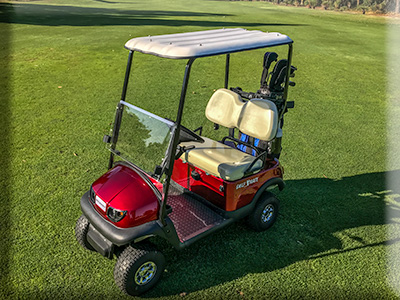 MiCaddy GM@ Golf Mate Electric golf cart with hart top canopy